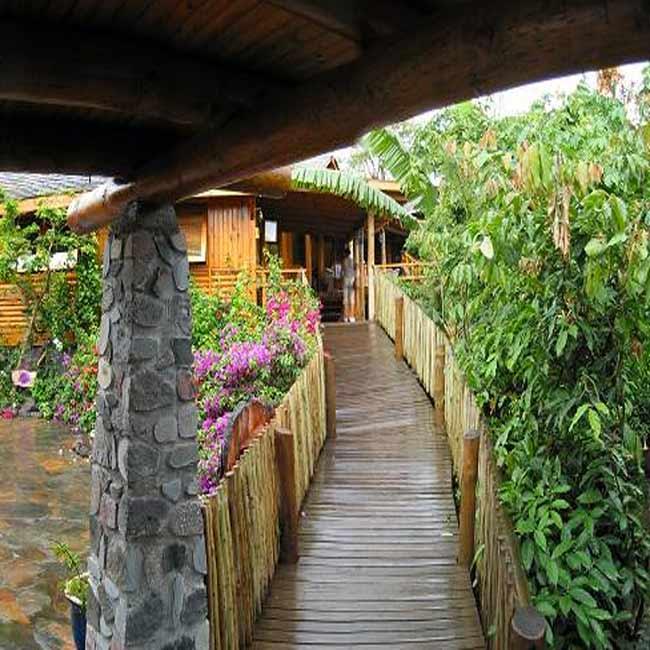 Lodge-Roche-Tamarin