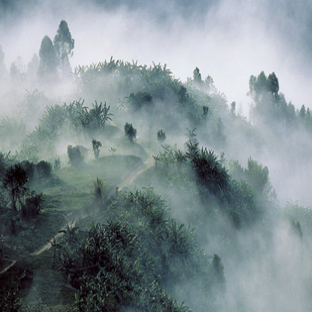 rwanda-lodge-expert-local-misterlodge