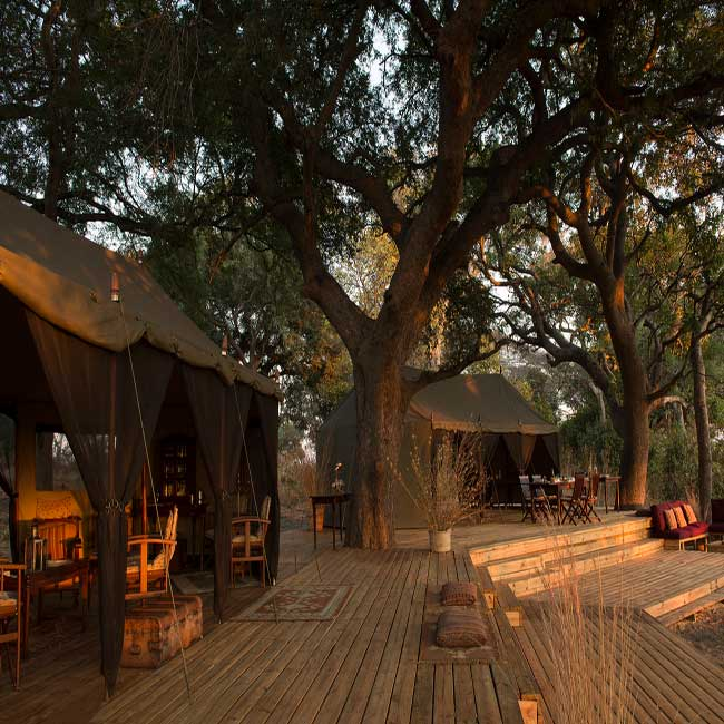 Chada-Katavi-Camp-Lodge