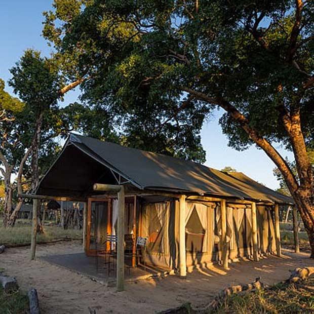 davison-camp