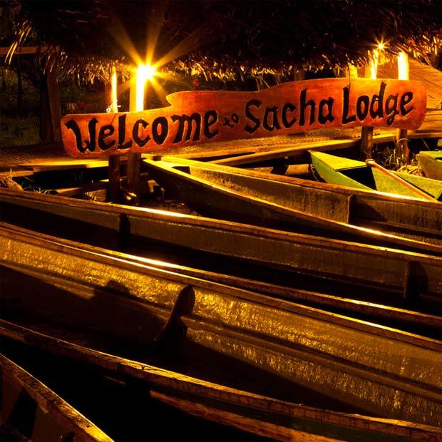 sacha-lodge