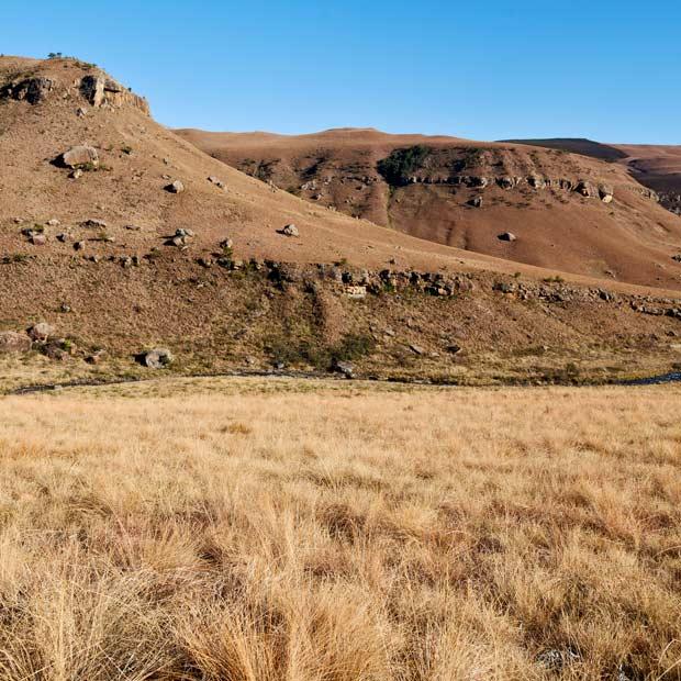 lodge-swaziland-destination-misterlodge