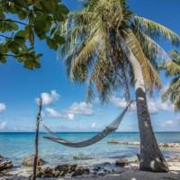 coconut-lodge-rangiroa-polynesie-tahiti-misterlodge
