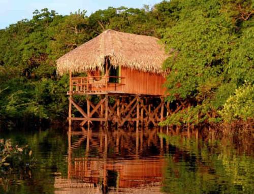 Communique de presse Juma Amazon Lodge