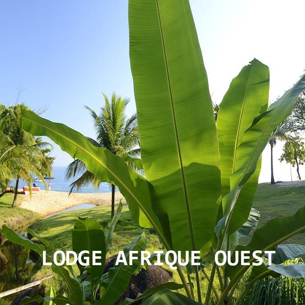 lodge-afrique-ouest-misterlodge