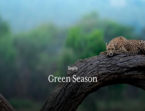 Singita, la saison verte en Afrique