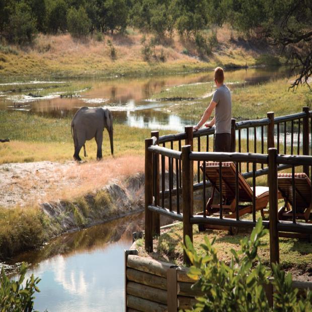 Belmond-Savute-Elephant-Lodge-vue